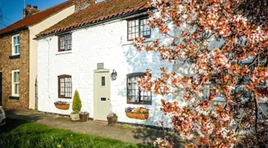 Clara's Cottage-1 of 25 photos