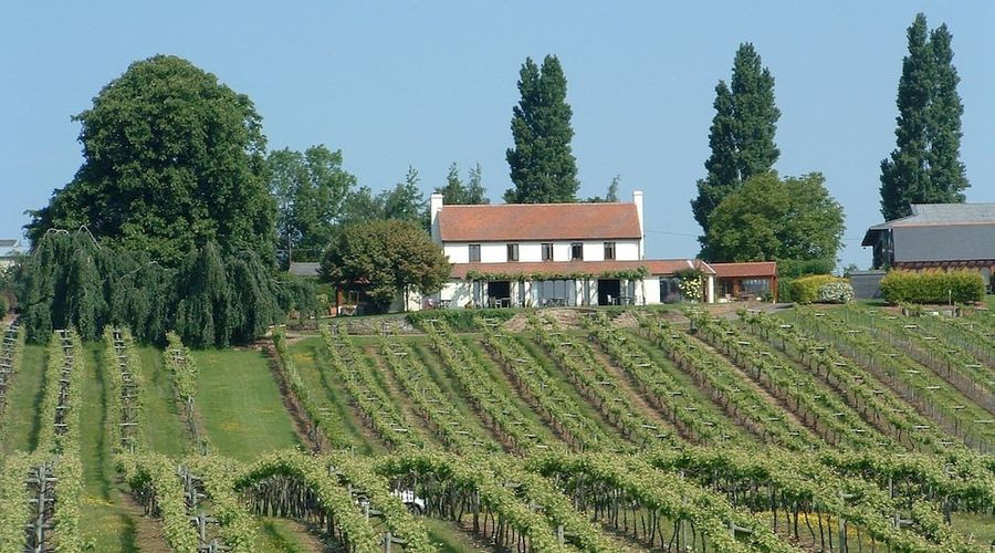 Three Choirs Vineyards-13 of 17 photos