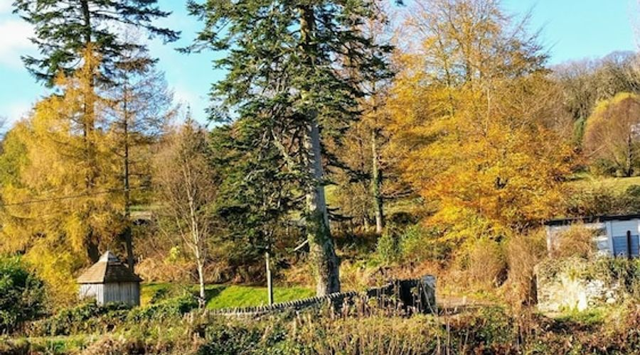 Crinan Canal Cottage-17 of 30 photos