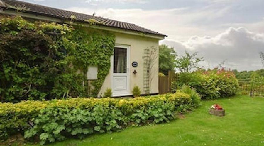Claire's Cottage-12 of 15 photos