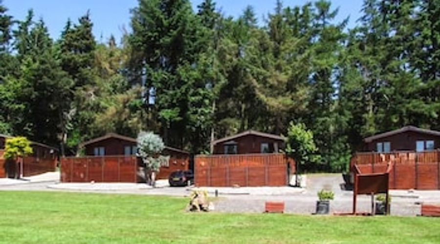 Kingfisher Lodge-10 of 11 photos
