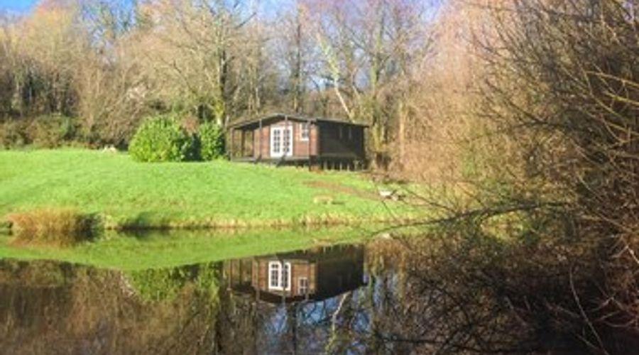 Lakeside Cabin-9 of 9 photos
