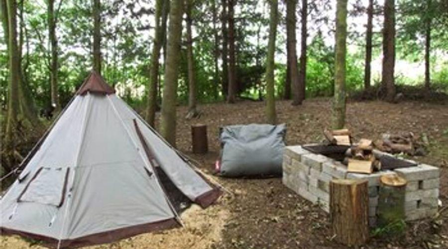 The Lakeside Yurt-14 of 15 photos