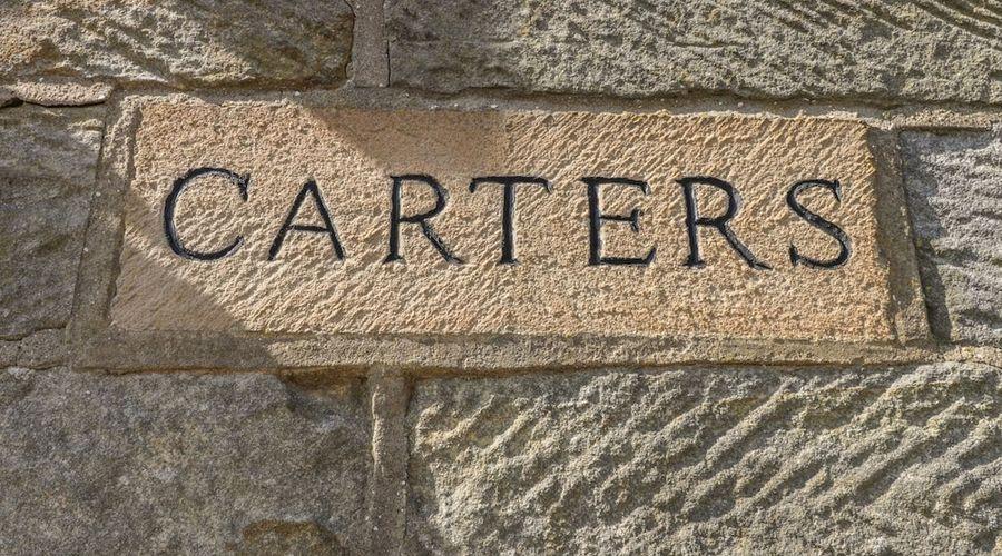 كارترز-11 من 15 الصور
