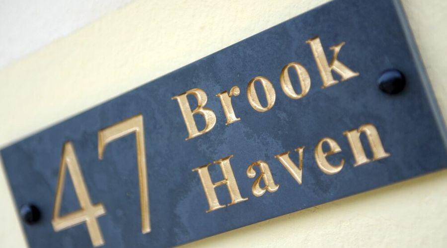 بروك هافين-12 من 12 الصور