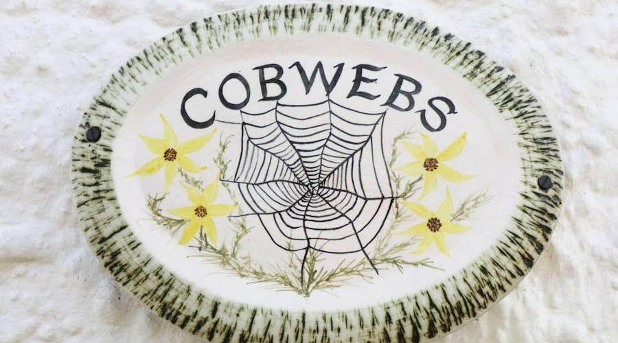 كوب ويبز كوتيدج-16 من 21 الصور