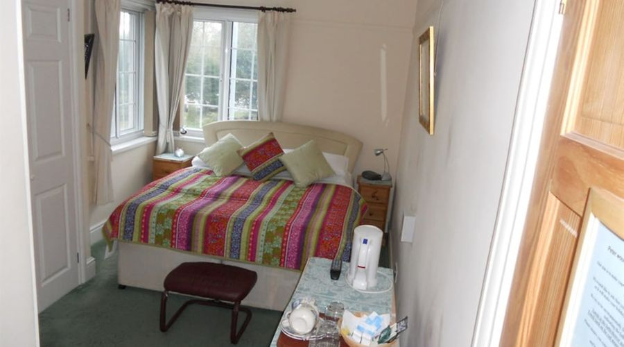 The Elms Guest House-6 of 25 photos