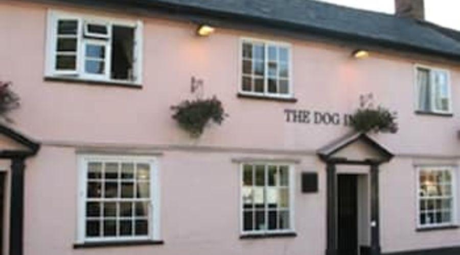 The Dog Inn-1 of 9 photos