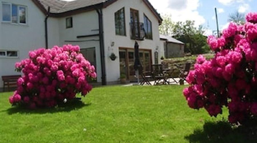 Glan Llyn Guest House-72 of 73 photos