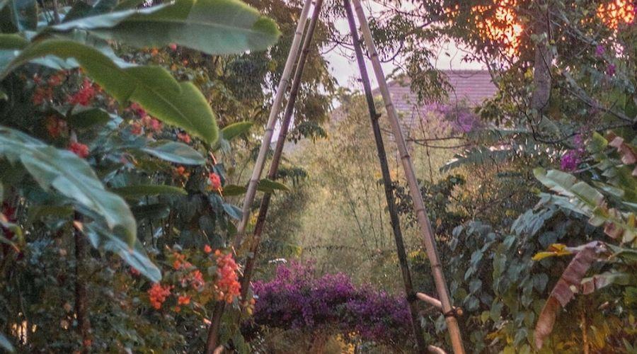 موندوك مودنج بلانتيشن-122 من 139 الصور