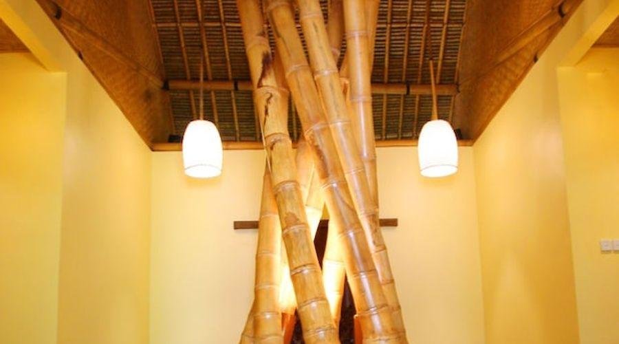 موندوك مودنج بلانتيشن-83 من 139 الصور