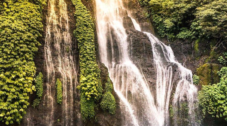 موندوك مودنج بلانتيشن-97 من 139 الصور