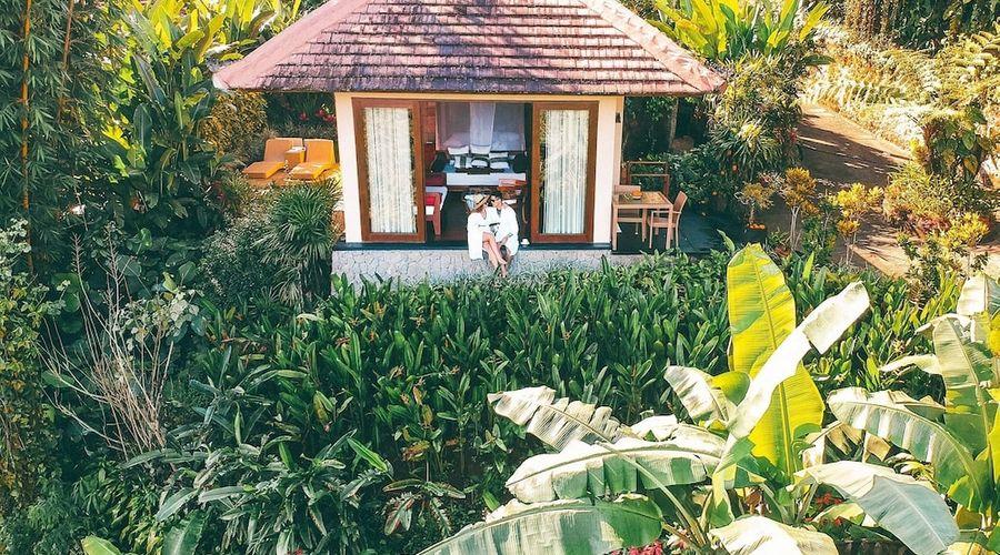 موندوك مودنج بلانتيشن-22 من 139 الصور
