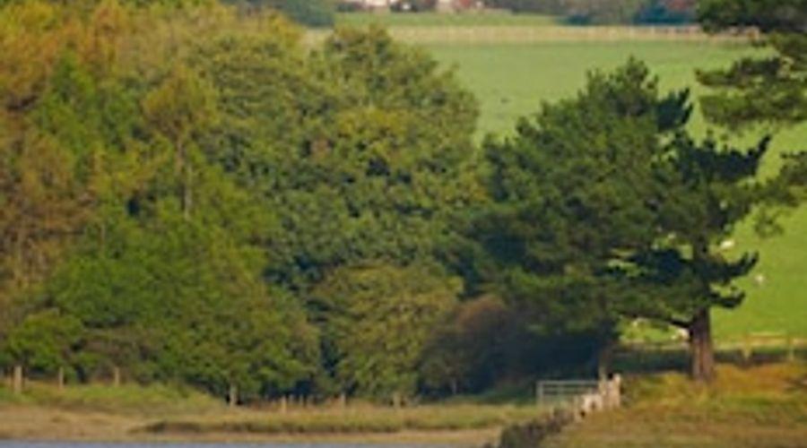 Boulston Manor-25 of 27 photos