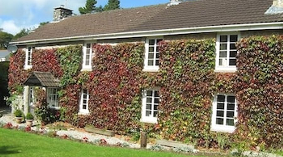 Ivy Cottage-1 of 12 photos