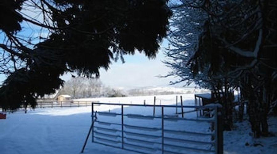 Ballas Farm Country Guest House-13 of 18 photos
