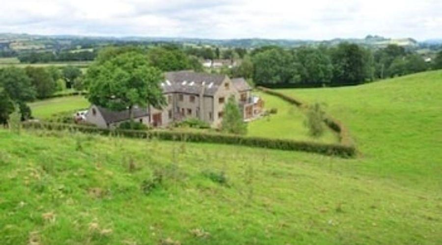 Llwyn Helyg Country House-35 of 37 photos