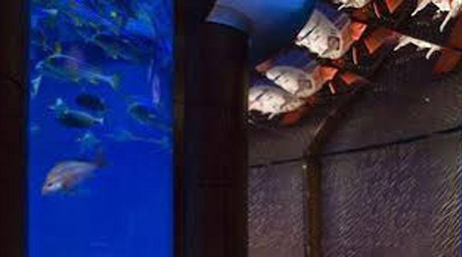 بيت البحر-9 من 10 الصور