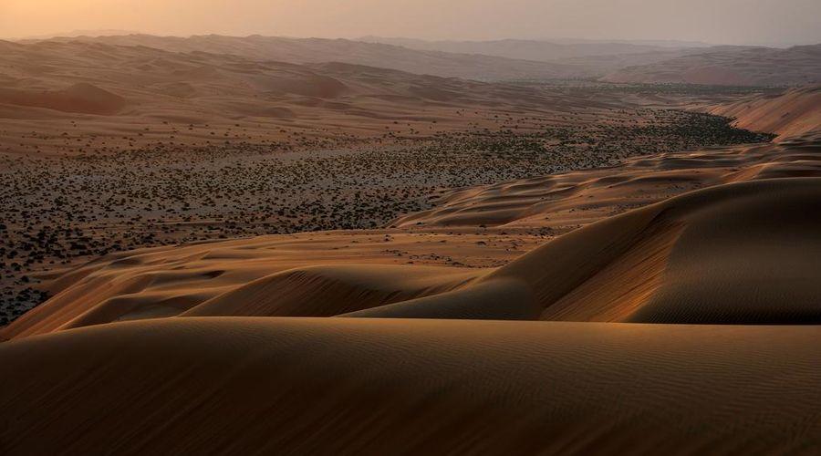 قصر السراب منتجع الصحراء أنانتارا-23 من 46 الصور