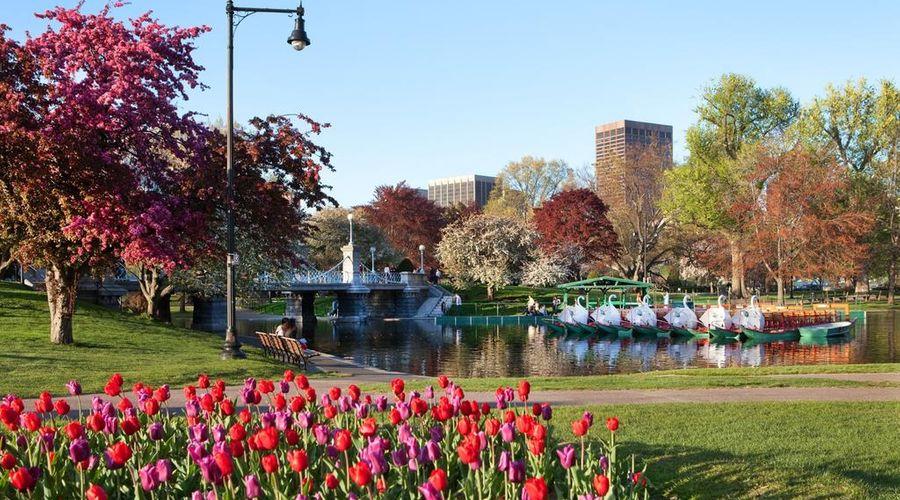ذا ويستن كوبلي بليس، بوسطن-9 من 32 الصور