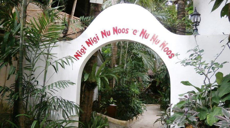 """Nigi Nigi Nu Noos """"e"""" Nu Nu Noos-1 of 43 photos"""
