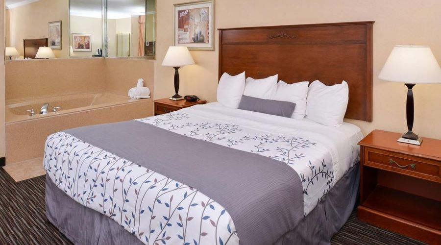 Best Western Airpark Hotel-16 of 29 photos