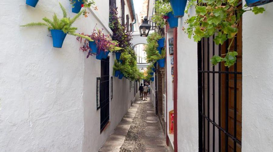 NH Collection Amistad Córdoba-48 of 50 photos