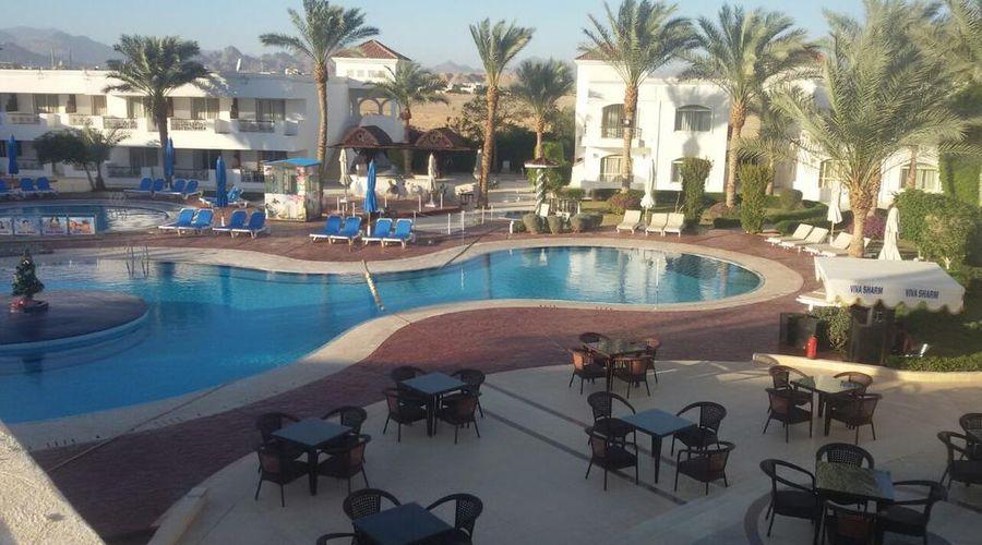 Viva Sharm-39 of 40 photos