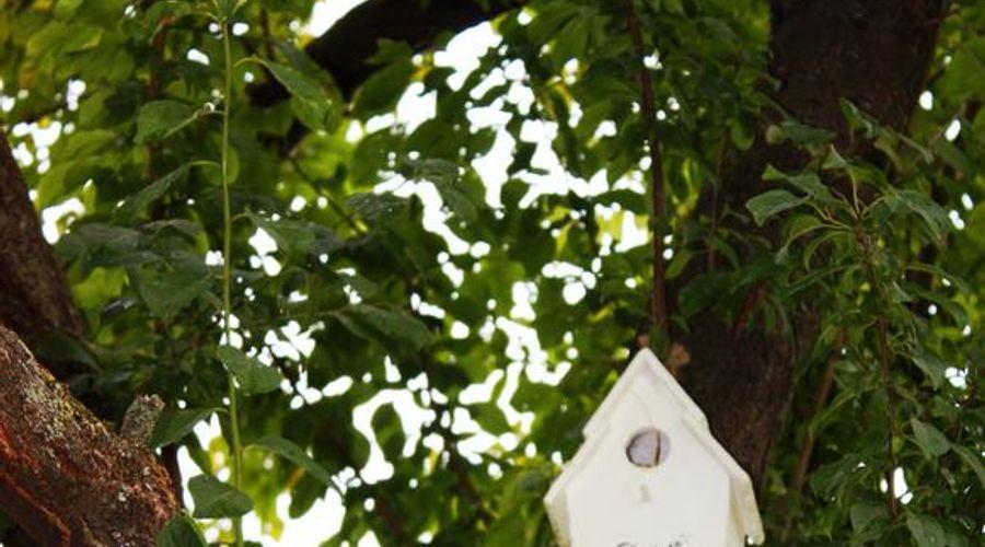 فيلا ماجنوليا ريليه-11 من 46 الصور