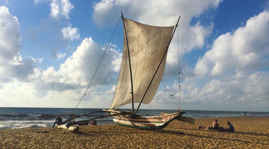 Amagi Aria - Negombo's Hidden Secret-22 of 45 photos