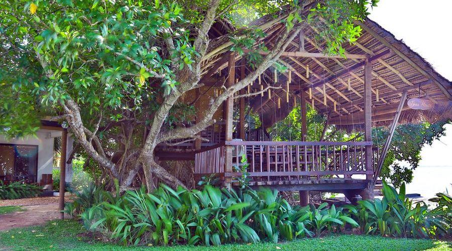 Amagi Aria - Negombo's Hidden Secret-8 of 45 photos