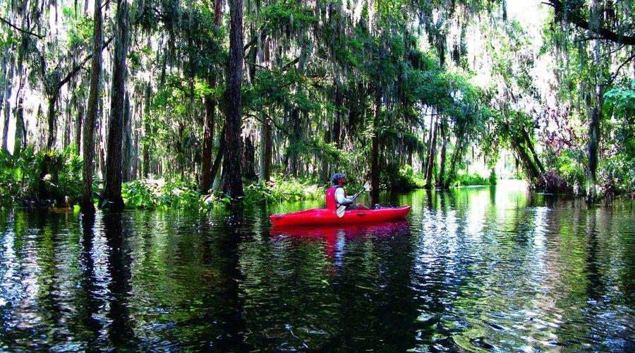 JW Marriott Orlando Grande Lakes-39 of 45 photos