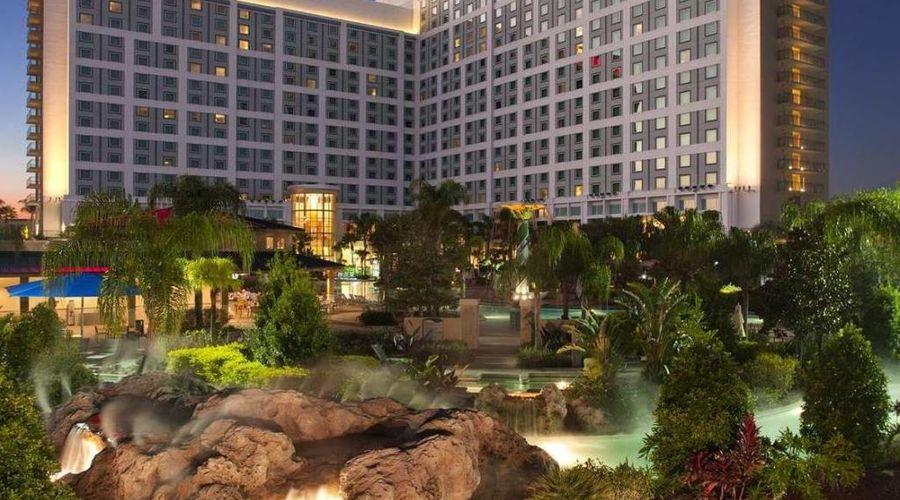 Hilton Orlando-1 of 26 photos