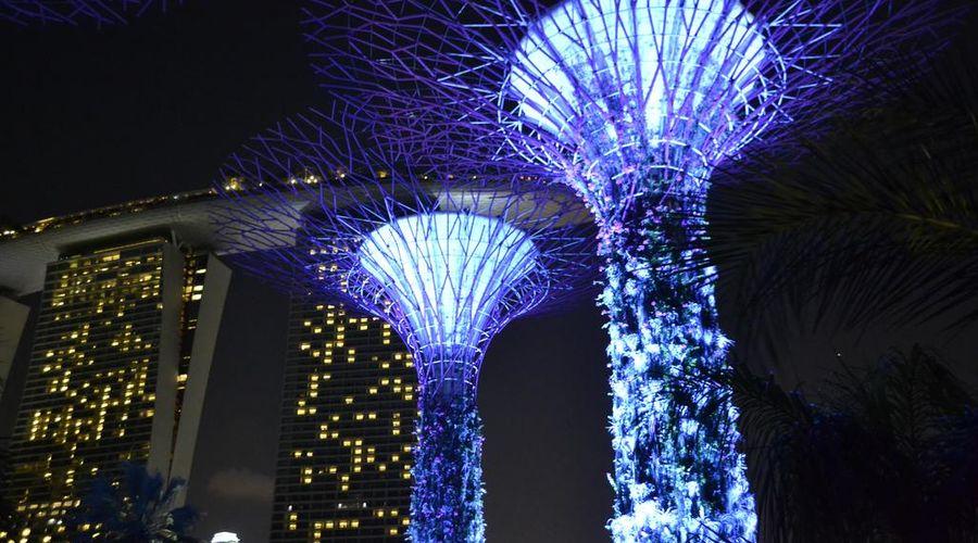 هوليداي إن سنغافورة أوركارد سيتي سنتر-3 من 27 الصور