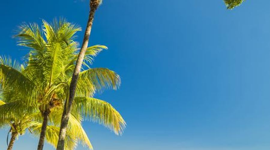 Maritim Resort & Spa Mauritius-25 of 46 photos