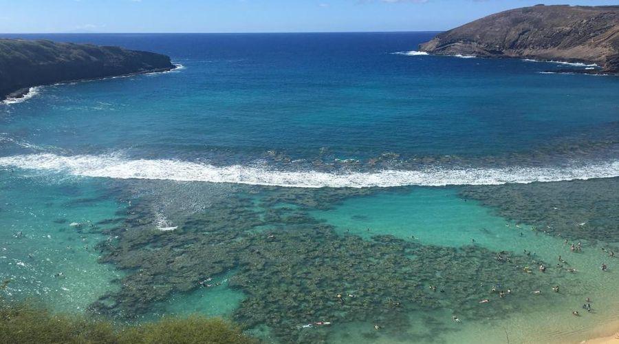 Waikiki Beach Marriott Resort & Spa-33 of 36 photos