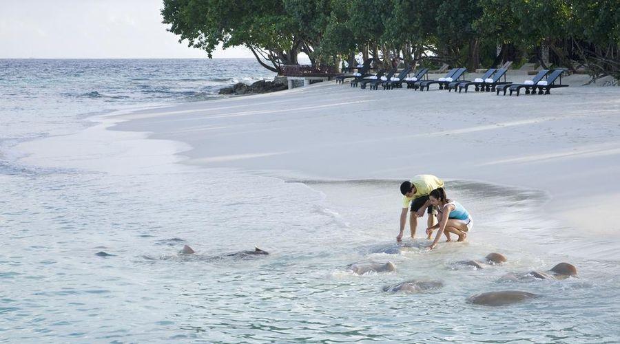 Taj Coral Reef Resort & Spa Maldives-25 of 34 photos