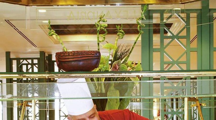 فندق ميركيور سفينكس القاهرة-5 من 46 الصور