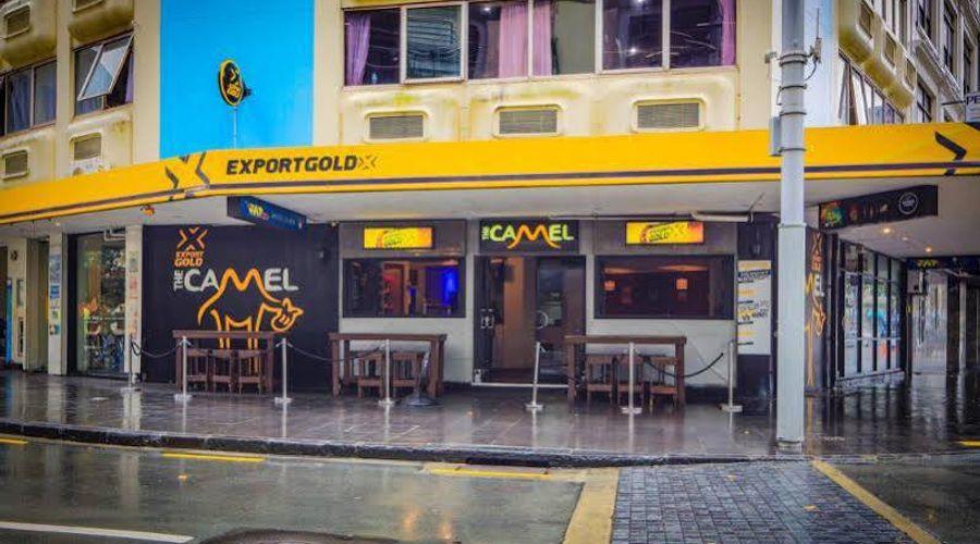 Fat Camel Hostel & Bar-1 of 31 photos