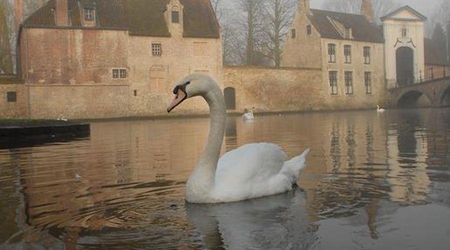 Hotel Dukes' Palace Bruges-36 of 37 photos