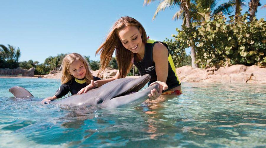 Fairfield Inn & Suites by Marriott Orlando at SeaWorld-22 of 29 photos