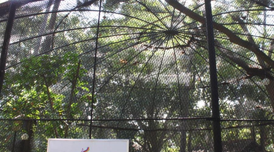 Club Balai Isabel-27 of 44 photos