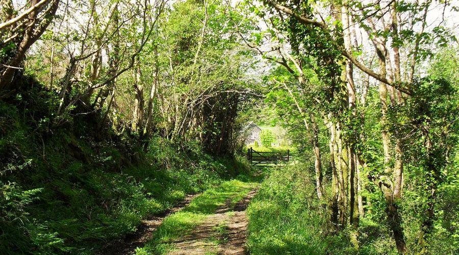 Lobhill Farmhouse-26 of 26 photos
