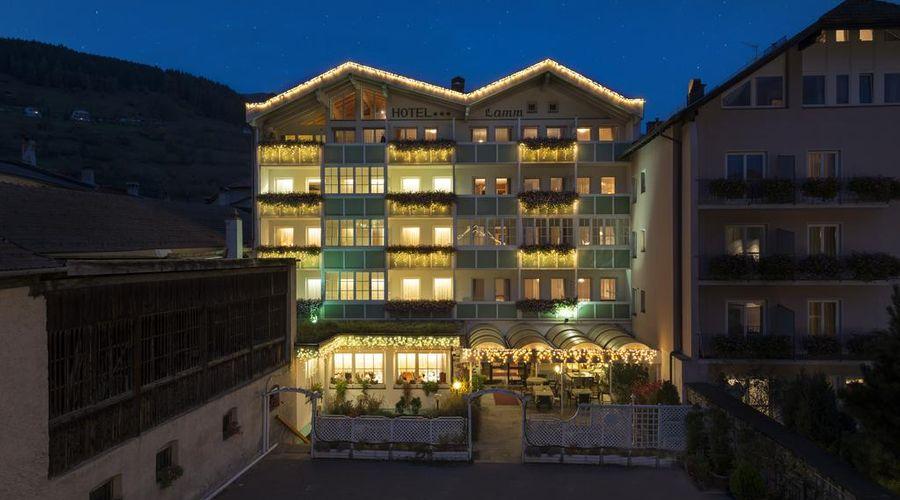 Hotel Lamm-7 من 46 الصور