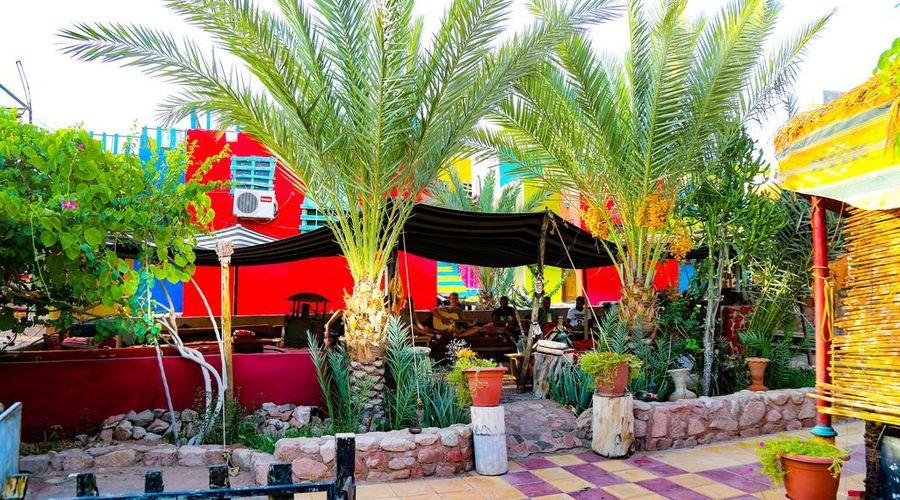 Bedouin Garden Village-9 of 42 photos