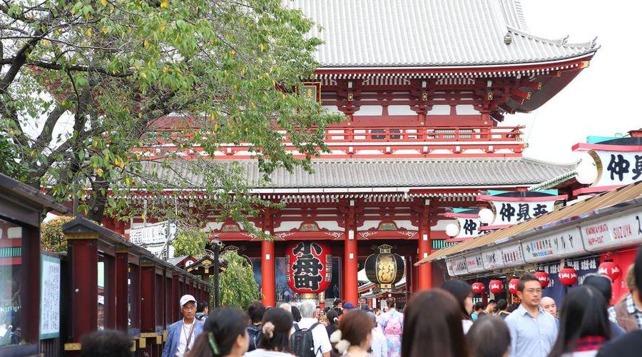 رويوكان كاموجاوا أساكوسا-26 من 35 الصور