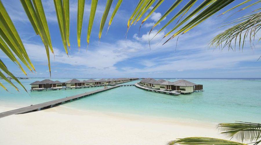 Paradise Island Resort & Spa-9 of 29 photos
