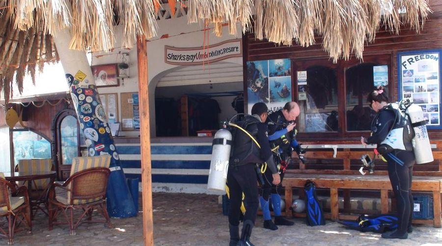 Sharks Bay Umbi Diving Village-26 of 42 photos