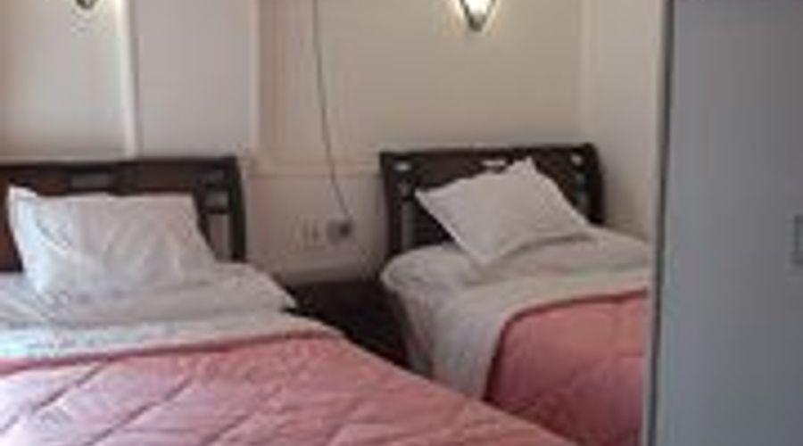 فندق قصر العائلة-6 من 30 الصور