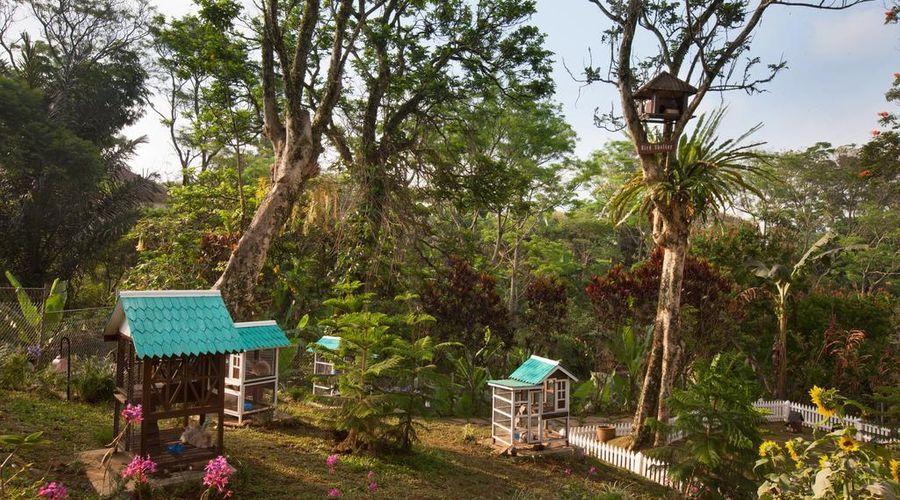 Novus Giri Resort & Spa-23 of 42 photos